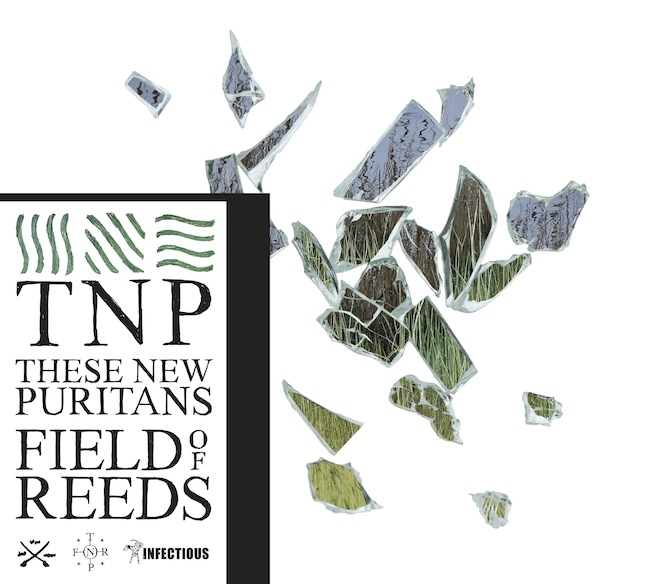 these-new-puritans-field-of-reeds